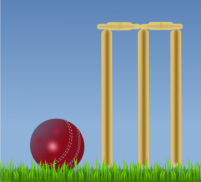 Online betting cricket tips batsman horse racing betting companies